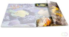 HERMA 19334 Elastomappen glossy dieren A3 PP fish