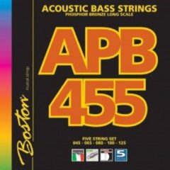 Boston APB-455 snarenset 5-snarige akoestische basgitaar