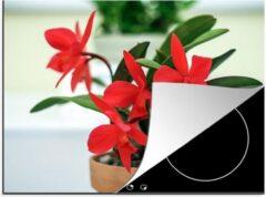 KitchenYeah Luxe inductie beschermer Rode orchidee - 70x52 cm - Rode orchidee in bloempot - afdekplaat voor kookplaat - 3mm dik inductie bescherming - inductiebeschermer