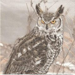 Daisy Servetten - Winter Owl