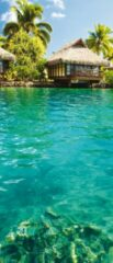 GroepArt Deursticker Muursticker Natuur   Turquoise   91x211cm