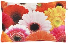 Paarse Dutch Decor Kussenhoes Samara 30x50 Cm Fuchsia