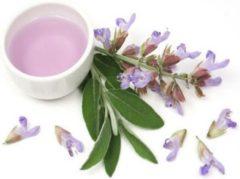 Scharlei Bloemen water 100 ml | Clary Sage Hydrolaat | 100% Puur | Biologisch | Roomspray | Bodyspray | Gezichtstonic | Gezichtsreiniging tonic | Huidverzorging | Pure Naturals