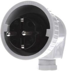 GIRA 002031 - Schuko-Stecker gr AP-WD 002031, Aktionspreis