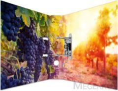HERMA 7111 Motief ordner A4 fruit - druiven