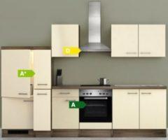 Flex-Well Küchenzeile G-300-2504 + Haube 6091 Eico 300 cm