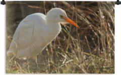 1001Tapestries Wandkleed Witte ibis - Een prachtige witte ibis met een oranje snavel Wandkleed katoen 150x100 cm - Wandtapijt met foto