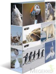 HERMA 7204 Motief-ordners A4 dieren - usweelden