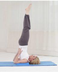 Yogablock Yogiblock Schulterstand Yogistar bordeaux
