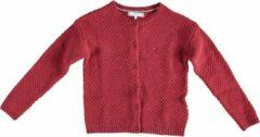 Tommy Hilfiger Stevig rood vest met allover roze glitterdraad - Meisjes Vest Maat 152