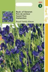 Blauwe Hortitops Zaden - Lathyrus Odor. Royal Family Blauw