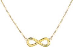 Goudkleurige The Jewelry Collection The Fashion Jewelry Collection Ketting Infinity 41 + 4 cm - Geelgoud