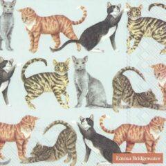 Blauwe IHR CATS papieren servetten