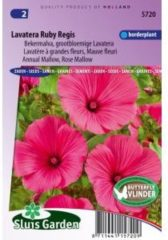 Sluis Garden Bekermalva bloemzaden – Lavatera Ruby Regis