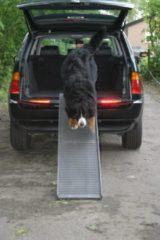 Antraciet-grijze Petstep Pet Step Dogstep inklapbare honden loop plank, antraciet