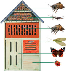 Insectenhuisje met steen XL Esschert Design Best for Birds