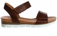 Bruine AQA Shoes A7331