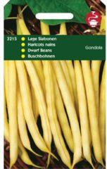 Hortitops Stamslabonen Phaseolus vulgaris Gondola (Wasboon witzadig) - Sla- of sperziebonen - 100gram