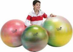 Gymnic Arte 65 BRQ - Fitnessbal en zitbal - Multicolour - Ø 65 cm