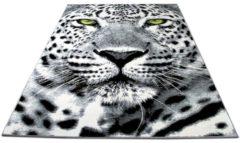Designer Teppich Carat Gepard Grau Grün Pergamon Grau Grün
