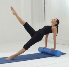 Paarse Fascia/pilates rol grey/violet Yogablok YOGISTAR