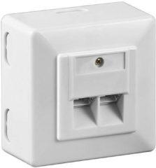 Witte Netwerk wandcontact opbouwdoos - 2x RJ45 / CAT6 - wit