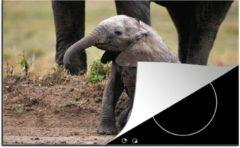 KitchenYeah Luxe inductie beschermer Baby olifant - 78x52 cm - Zittende baby olifant in de Masai Mara - afdekplaat voor kookplaat - 3mm dik inductie bescherming - inductiebeschermer