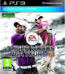 Electronic Arts Tiger Woods PGA Tour 2013
