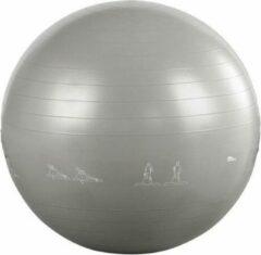 Discountershop Gym Bal - Fitnessbal - Gymball - Gymnastiekbal - Ø 65 cm - Gymbal - Inclusief pomp - Grijs