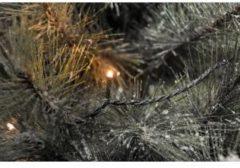 Konstsmide 3613-800 Geschikt voor gebruik binnen 200lampen Geschikt voor buitengebruik Micro LED Zwart decoratieve verlichting