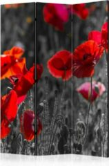 Rode Kamerscherm - Scheidingswand - Vouwscherm - Red Poppies [Room Dividers] 135x172 - Artgeist Vouwscherm