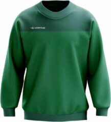 Jartazi Sweater Bari Junior Micro-polyester Groen Mt 110/116
