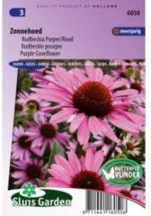 Rode Sluis Garden Rudbeckia purper/rood bloemzaden – Zonnehoed