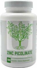 Universal Nutrition Zinc Picolinate 120caps