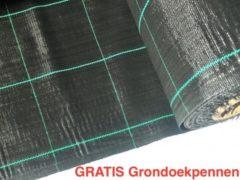 Zwarte Agrosol Campingdoek - Gronddoek - Worteldoek 2,10M X 4M totaal 8,4M² + 15 GRATIS grondpennen. Hoge kwaliteit, lucht en water doorlatend.