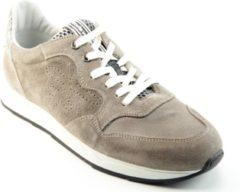 Floris van Bommel 16446 Sneakers heren Maat: 46 (11) beige 02 Taupe suède