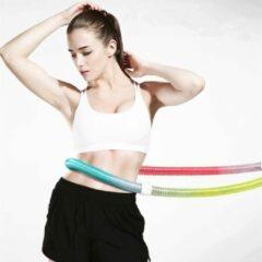 TDR - Unieke Hoelahoep en Rekband - fitness - met metalen veer - regenboog kleur