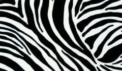 Witte Gekkofix Plakfolie - Kleeffolie - Kleefplastiek - Plakplastiek - Hoogwaardig - 45 cm x 300 cm - Zebra
