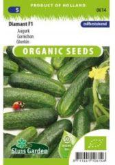 Sluis Garden Augurk (zelfbestuivend) zaden - Diamant F1