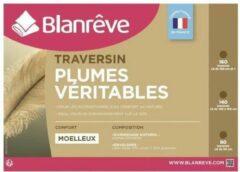 BLANREVE Veer Bolster 160 cm