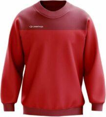 Jartazi Sweater Bari Heren Micro-polyester Rood Maat Xl