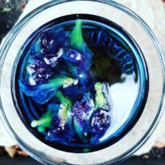 Louny Tea True Blue blauwe butterfly pea thee (afslanken, weerstand, afvallen, gezond, antioxidanten, cafeïne vrij)