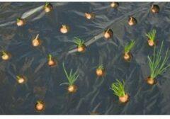 Nature Kweekfolie Kleine Groenten - Groeifolie Gronddoek - 0.95x5 m Zwart Anti-Uv