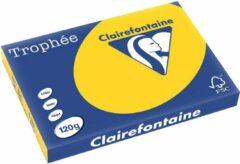 Trophee Clairefontaine Trophée Pastel A3 goudgeel 120 g 250 vel