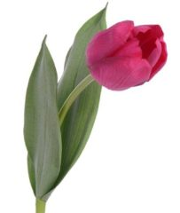 Plants Natural touch tulp roze