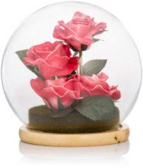 Cottage Dreams LED-Rosen in Glas-Cloche