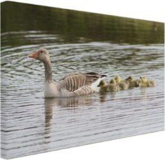 Bruine Fotocadeau.nl Gans met baby's Canvas 80x60 cm - Foto print op Canvas schilderij (Wanddecoratie)