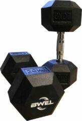 Zwarte BWEL Hexa dumbbells 20kg