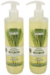 MINERAL Beauty System Shampoo Lemongrass 2er Pack