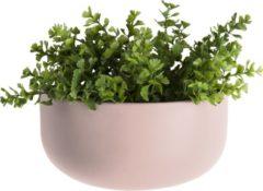 Pt, (Present Time) Oval - Plantenpot - Keramiek - 20 x 10,8 x 9,5cm - Lichtroze (mat)